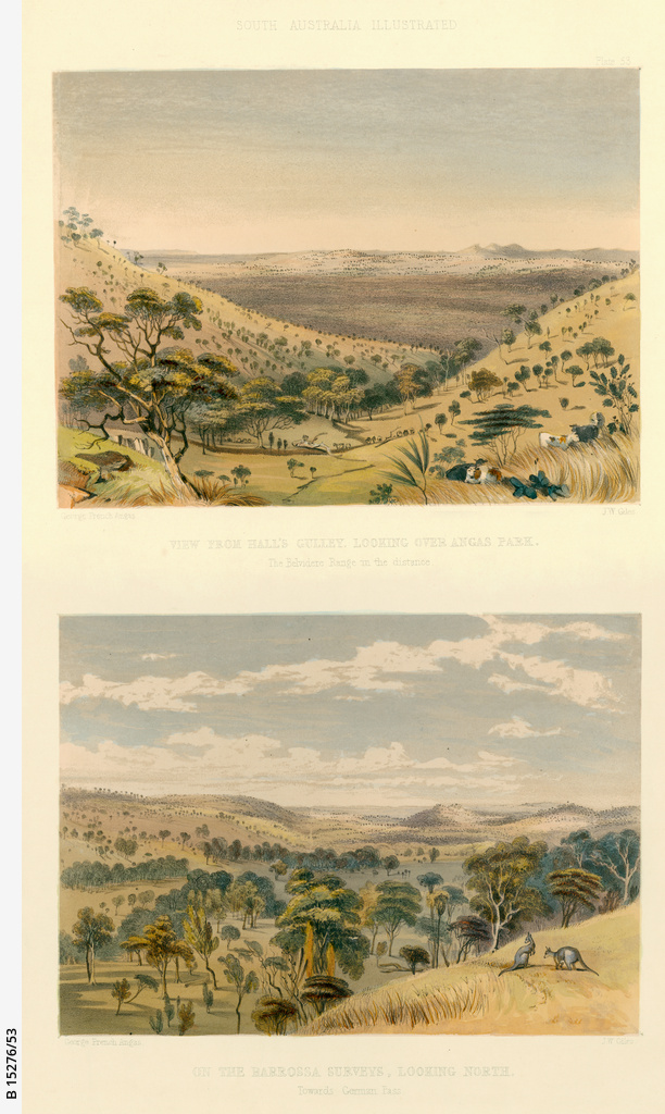 Views from Hall's Gulley, looking over Angas Park; and View on the Barossa Surveys