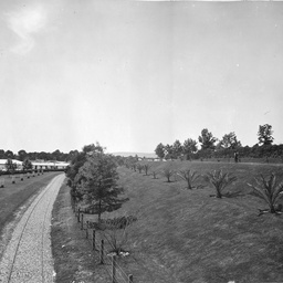 Old Exhibition railway line near the Torrens Parade Ground