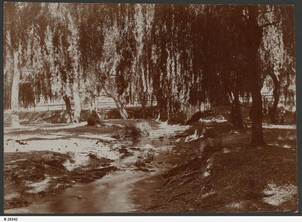 Brownhill Creek, Mitcham