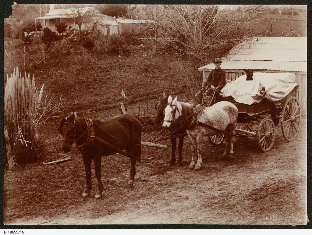 Horse-drawn wagon, Heywood farm, Mount Compass