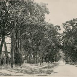 Cudmore Park
