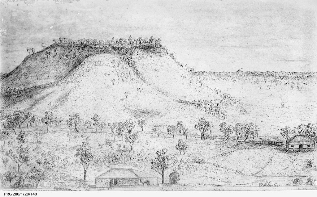 A drawing of countryside near Augusta Timber Station, Western Australia