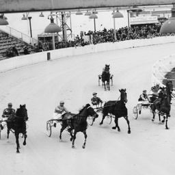 Start of the SA Derby