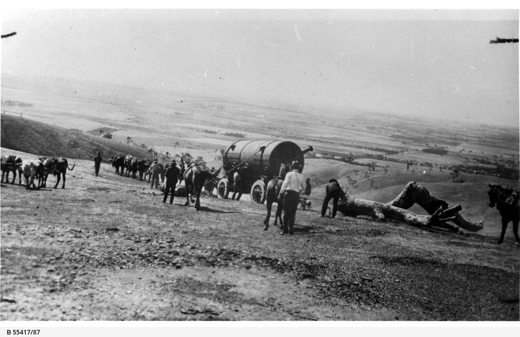 Bullock team transporting a large boiler