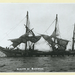 The wreck of the 'Bacchus'