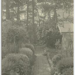 Photos of the Heysen family and The Cedars