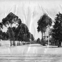 Kintore Avenue, Adelaide