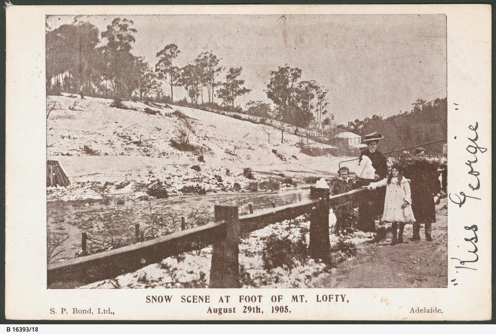 Snow at Mount Lofty