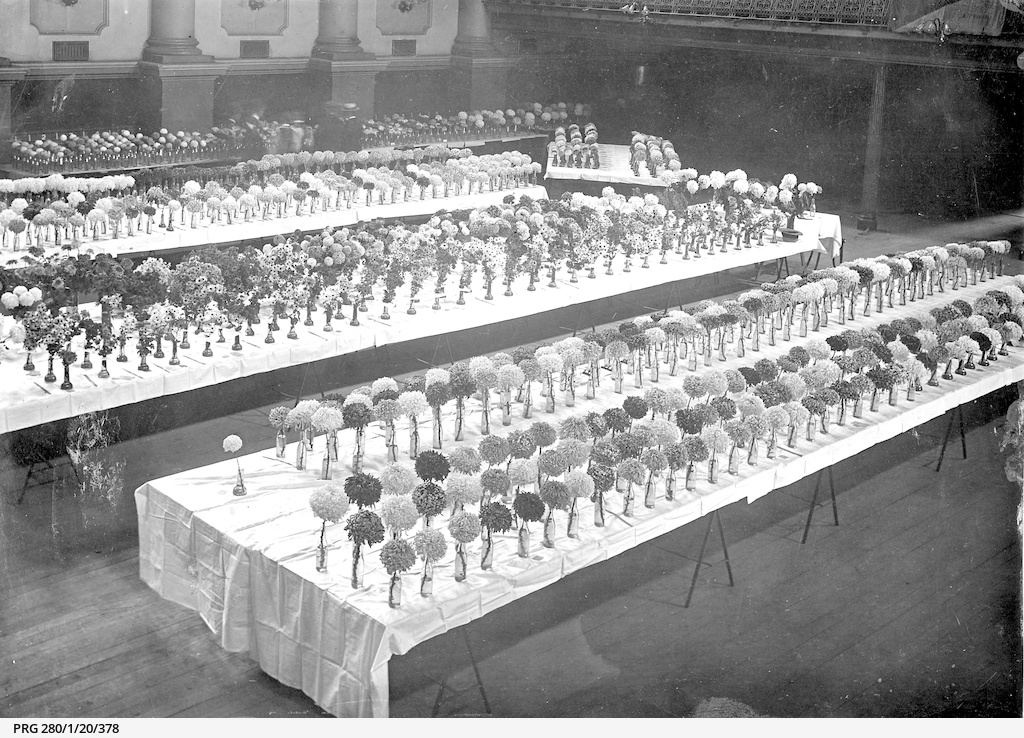 Tables of flower exhibits at a show in Two Wells, South Australia