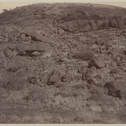 Gorge in Everard Range