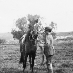 Boy standing next to his horse
