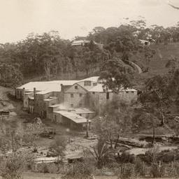 Coromandel Valley