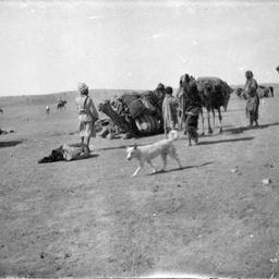 Camels and men.