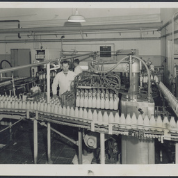Milk bottles at SA Farmers' Co-Op Union Ltd. Dairy Produce Department, Mile End