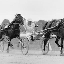 Racing in the Finniss Handicap