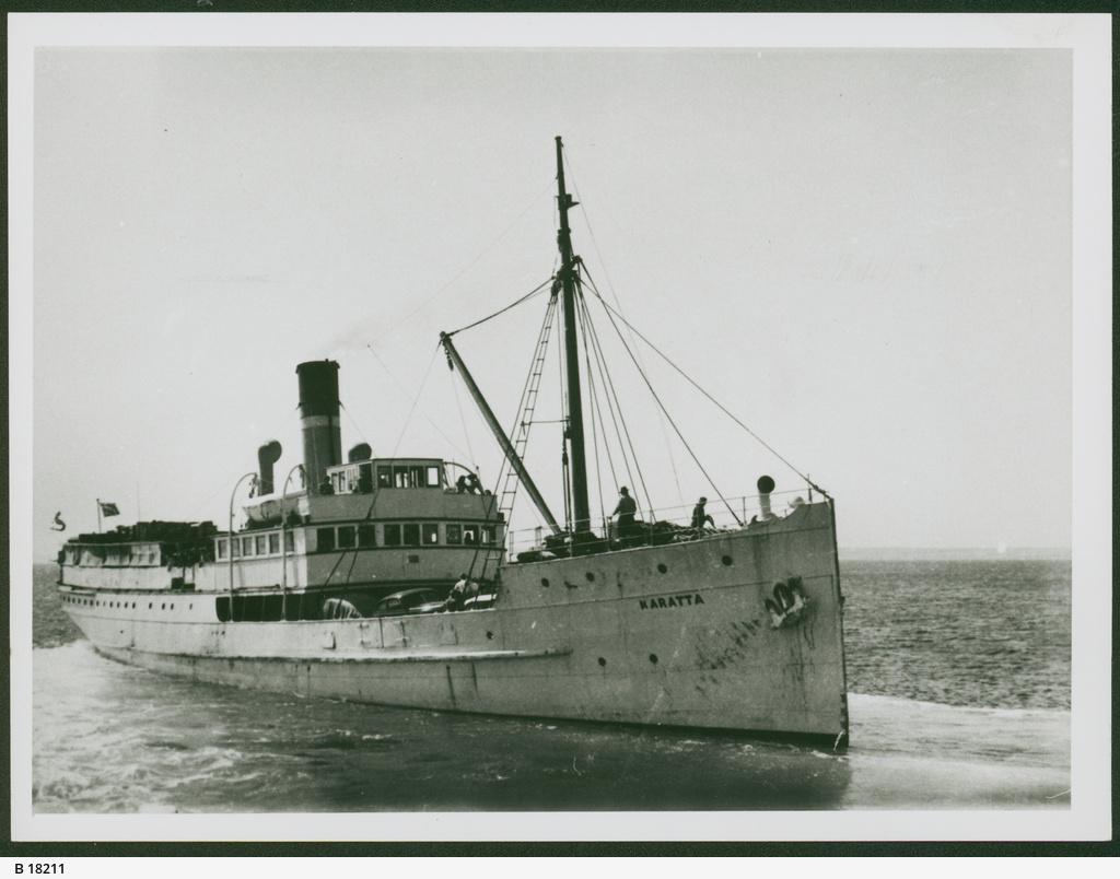 cargo-passenger ships