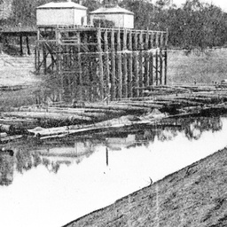 Moama Wharf in the 1920s with a barge loaded with logs